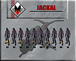 Command Stucture Jackal
